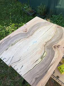Click image for larger version.  Name:spalted plane tree 4.jpg Views:63 Size:707.9 KB ID:19809
