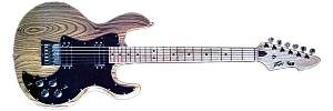 Click image for larger version.  Name:Peavey T series.jpg Views:28 Size:41.0 KB ID:30694