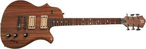 Click image for larger version.  Name:BC Rich Seagull.jpg Views:52 Size:24.0 KB ID:30652